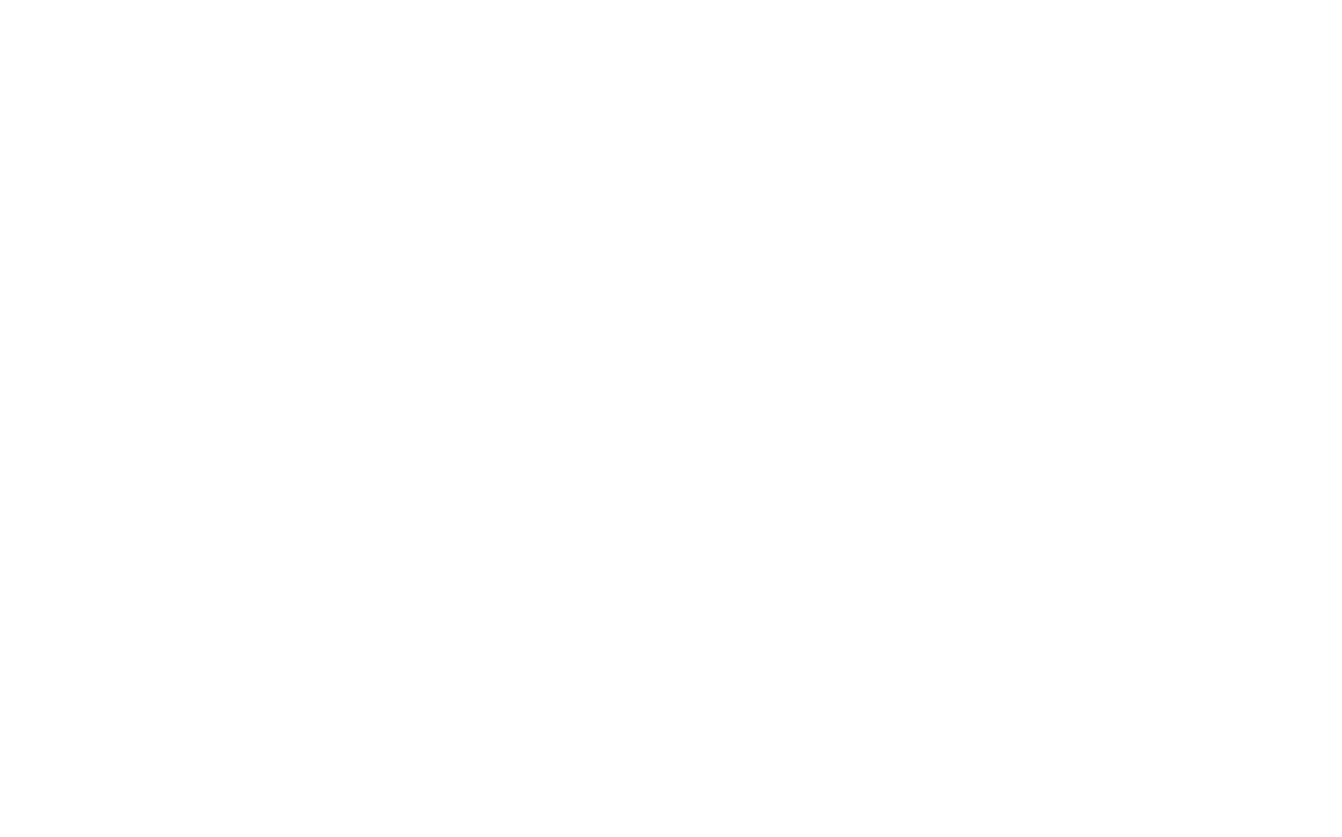 Sublogo_OnTrackCoaching_WIT
